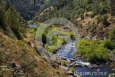 Scena americana della natura del fiume