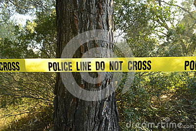 Scena del crimine nella foresta