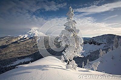 Scena di inverno del cappuccio di Mt
