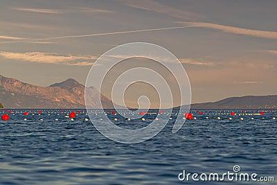Scene on sea