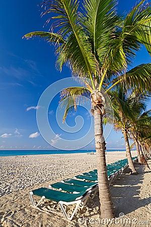 Scenery of Caribbean beach