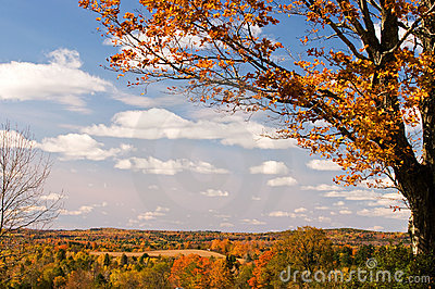 Scenic autumn foliage Maine