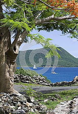 Scenic caribbean view