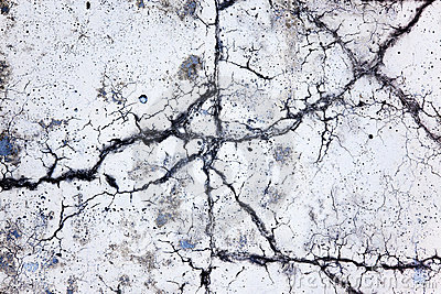Scenic crack in concrete