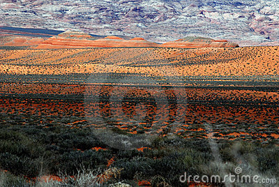 Scenic Desert Dune and Rock Ridge