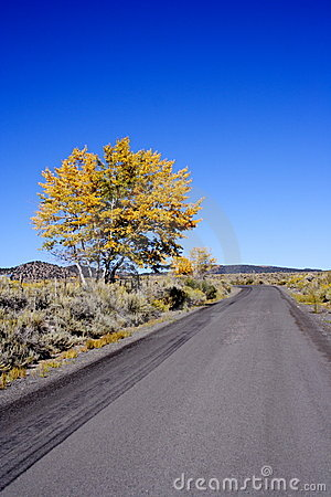 Free Scenic Drive Royalty Free Stock Photos - 367858