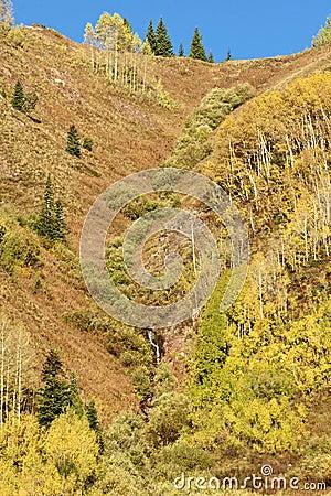 Scenic Fall Mountainside