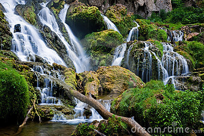 Scenic forest waterfall