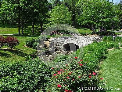 Scenic Garden
