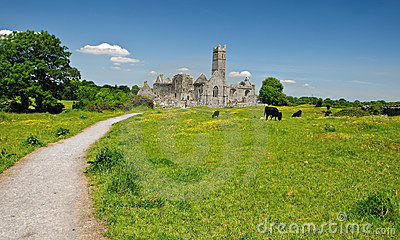 Scenic irish ancient church abbey ruins landscape