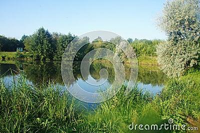 Scenic landscape of lake nature Ukraine, Europe lake and forest blue sky Stock Photo