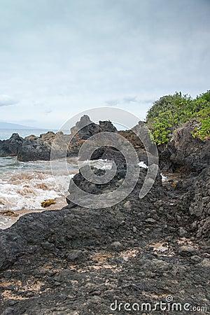 Scenic Maui Shoreline