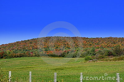 Scenic mountains in the fall