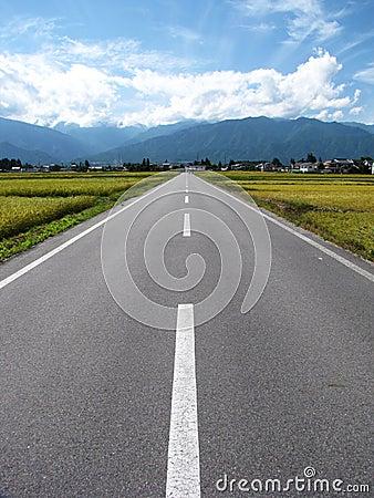 Scenic Road 2