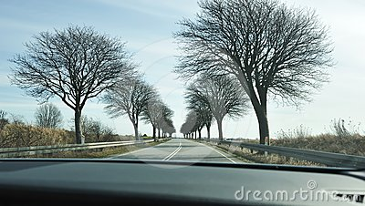 Scenic road in Denmark
