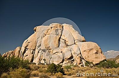 Scenic rocks and trees in JoshuaPark