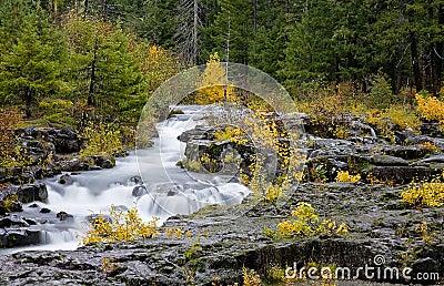 Scenic Rogue River Gorge