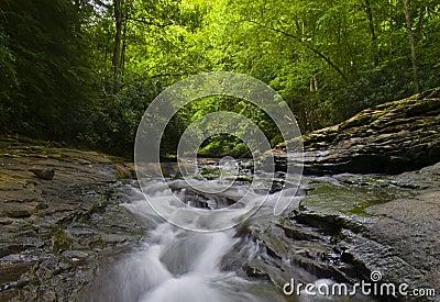 Scenic stream in Pennsylvania