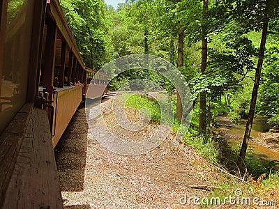 Scenic train drive