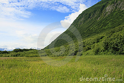 Scenic Valdez Alaska