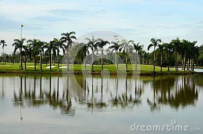 Lake, sand traps, palm trees & golf
