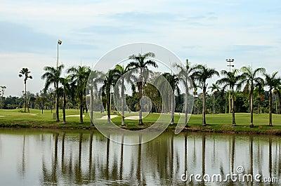 Lake, sand traps, palm trees & golf