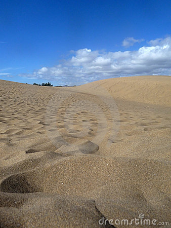 Scenic View Of Maspalomas Dunes
