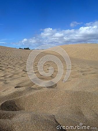 Scenic View Of Maspalomas Dunes