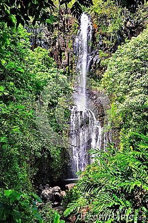 Free Scenic Waterfall Stock Photos - 54352253