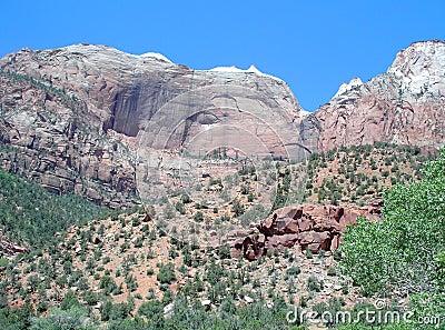 Scenic Zion View