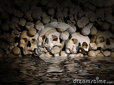 Schädel und Knochen