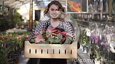 Schön, europäisch lächelnd Gärtnerin in Plaid-Shirt und schwarzen Schürze mit Karton mit rosa Blütenpflanzen stock video footage