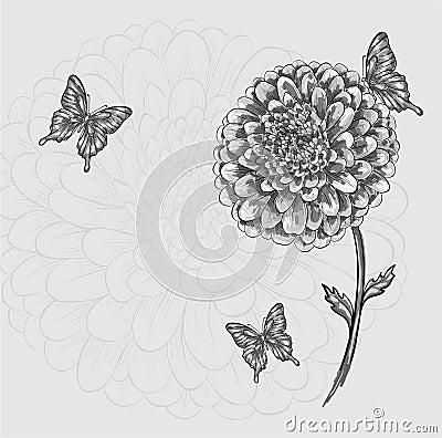 sch ne schwarzweiss blume mit schmetterlingen stockfotos bild 38143763. Black Bedroom Furniture Sets. Home Design Ideas