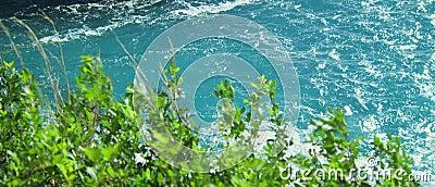 Schönes klares blaues Meerwasser stock video footage