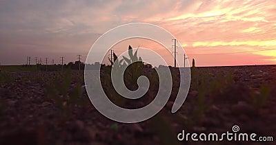 Schattenbild des kauernden Geschäftsmannes lang und kurvenreiche Straße überschreiten durch grüne Hügel mit Landschaftslandschaft stock video footage
