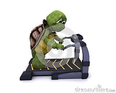 Schildpad die op een tredmolen loopt