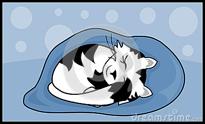 SchlafenMiezekatze