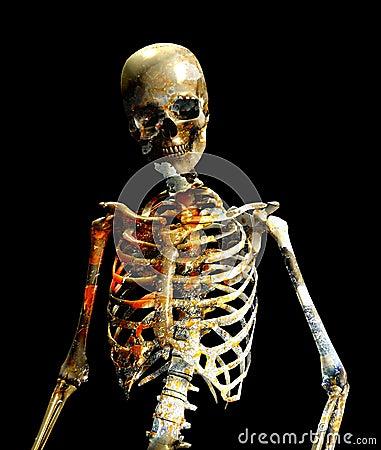 Schmutzige Knochen