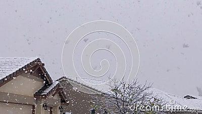 Schneefall im Winter 6262 stock footage