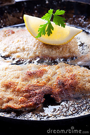 Free Schnitzel Royalty Free Stock Images - 21057069