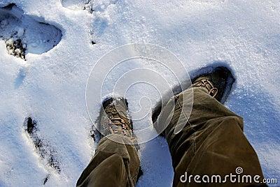 Schoenen en sneeuw