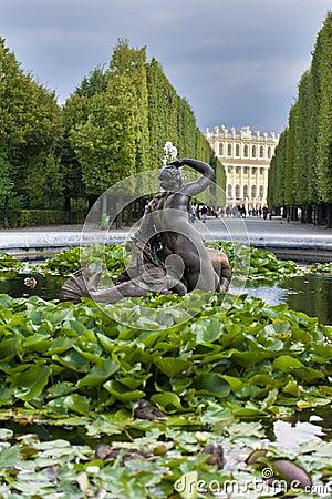 Schonbrunn Palace Garden