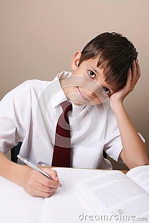 Free School Boy Stock Photo - 10068900