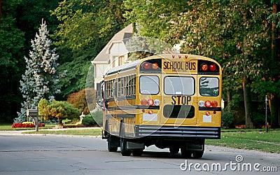School Bus in Neighborhood