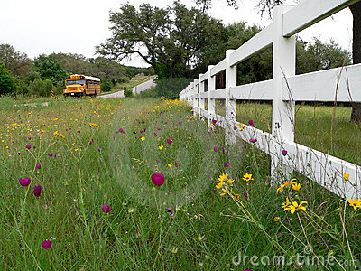 School Bus on Rural Texas Road