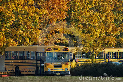 School buses at end of day