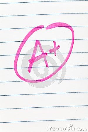 School grade