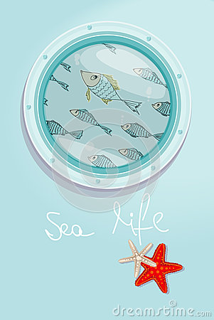 Free School Of Fish Swimming Past A Ships Porthole Royalty Free Stock Photography - 38817587