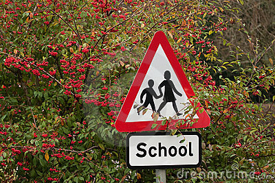 School sign among red berries