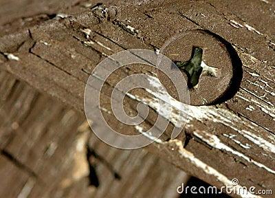 Schraube am Holz